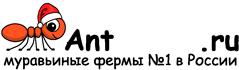 Муравьиные фермы AntFarms.ru - Королев
